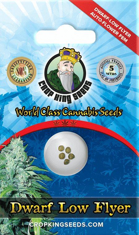 Dwarf-Low-Flyer-Autoflower-Marijuana-Seeds