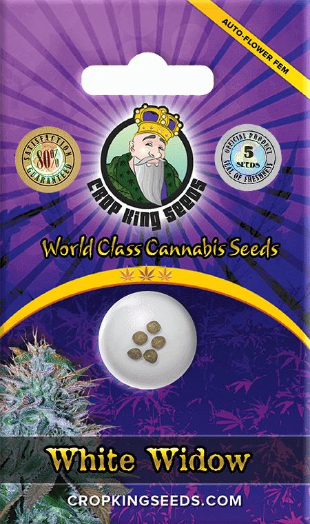 White-Widow-Autoflower-Marijuana-Seeds