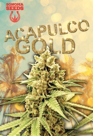 Acapulco Gold Seeds