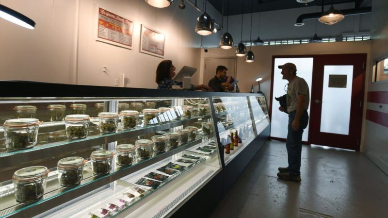 best canadian seed banks
